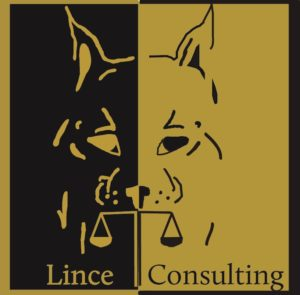 Logo Lince consulting
