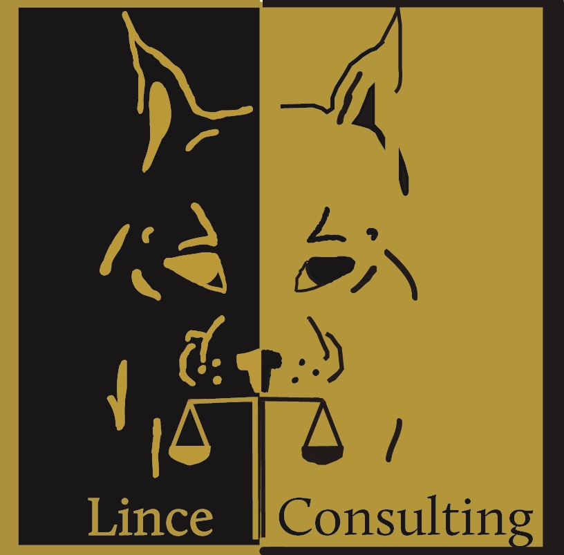 Lince Consulting